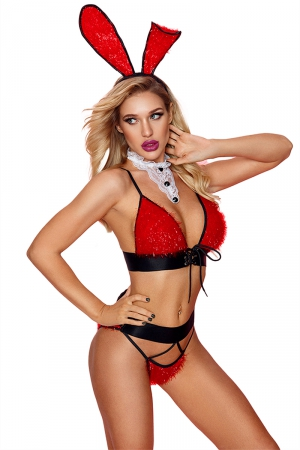 Costume sexy de lapine - Paris Hollywood